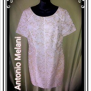 ‼️SALE‼️ANTONIO MELANI FLORAL LACE SHEATH DRESS